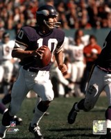 Fran Tarkenton Action Framed Print