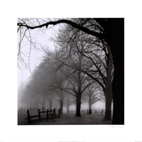 Black and White Morning Fine Art Print