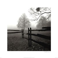 Fence in the Mist Fine Art Print