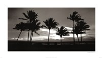 Sunrise Palms Fine Art Print