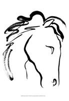 Equine Profile II Fine Art Print