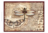 Poetic Dragonfly I Fine Art Print