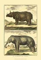 Elephant and Rhino Fine Art Print