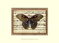 Butterfly Harmony I Fine Art Print