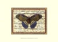 Butterfly Harmony II Fine Art Print