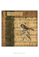 Bird Melody I Fine Art Print