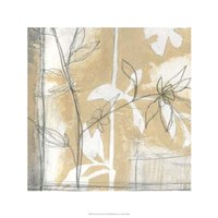 Neutral Garden Abstract IV Framed Print