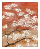 Mandarin Mist II Framed Print