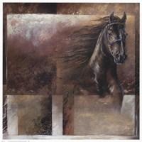 Stallion Fine Art Print
