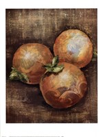 Seraser Fruit IV Fine Art Print