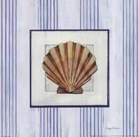 Sanibel Shell I Framed Print