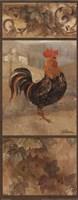 Black Rooster Framed Print