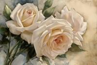 La Roseraie I Fine Art Print