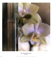 Bamboo IV Fine Art Print