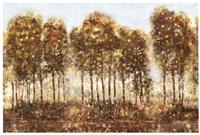 Treelandscape II Framed Print