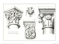 Capital And Corbels Fine Art Print