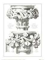 English Capitals Fine Art Print