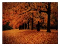 Gold of Autumn West Fine Art Print