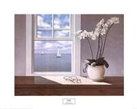 Orchid Fine Art Print