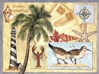 Ocean Paradise Framed Print