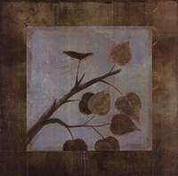 Aspen - CS Fine Art Print
