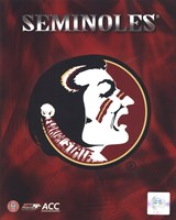 2008 Florida State University Team Logo Fine Art Print