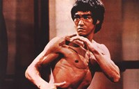 Enter the Dragon Karate Action Fine Art Print