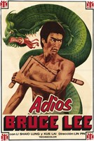 Adios Bruce Lee Framed Print
