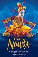 Cirque du Soleil - La Nouba, c.1998 Framed Print