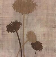 Linen II Fine Art Print