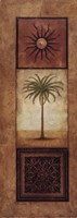 Palm In The Sunlight Framed Print