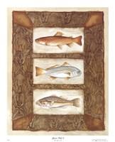 Sport Fish II Fine Art Print