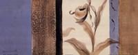 Serene Orchid II Framed Print
