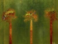 3 Palms II Fine Art Print