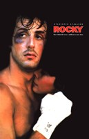 Rocky Black Eye Framed Print