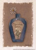 Chamomile Lotion Fine Art Print