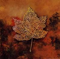 Gilded Lace Fine Art Print