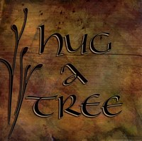 Hug a Tree Framed Print