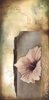 Hibiscus in White II Fine Art Print