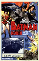 Batman and Robin - Batman Victorious Framed Print