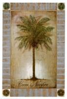 Cocos Nucifera Fine Art Print