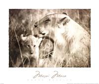Masai Mara II Fine Art Print