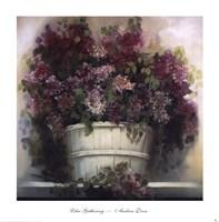 Lilac Gathering Fine Art Print
