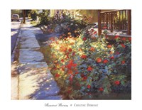 Mainstreet Morning Framed Print