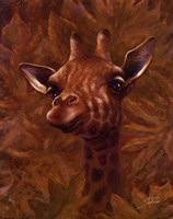 Safari Giraffe Framed Print