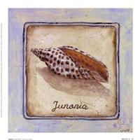 Junania Fine Art Print