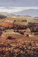 Golden Vineyard I Fine Art Print
