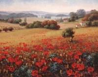 Italian Poppy Vista II Fine Art Print