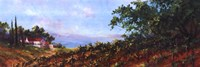 Lakeside Vine Framed Print