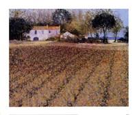 Campagne A Mougiau Fine Art Print